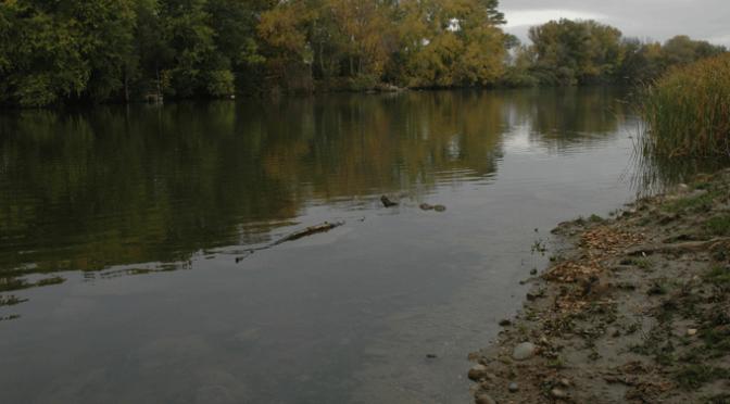 La calidad del agua de los ríos riojanos  registra una calificación buena o muy buena