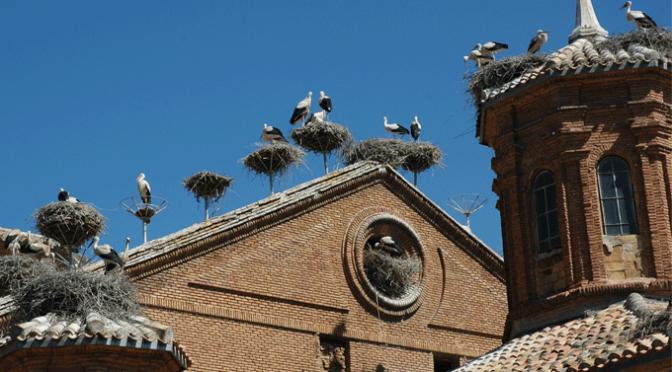 XXIII Encuentros con la Historia de Alfaro
