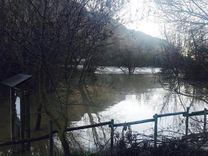 Alerta en la Ribera con los rios Ega y Ebro