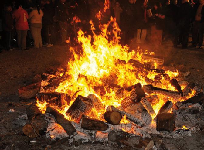 Celebración de San Antón en San Adrián