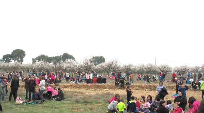 Suspendido El Día de la Culeca en Alfaro