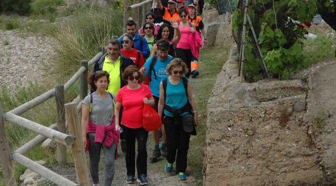 Imágenes de la Marcha Vía Verde del Cidacos, celebrada el 13 de mayo entre Arnedillo y Calahorra