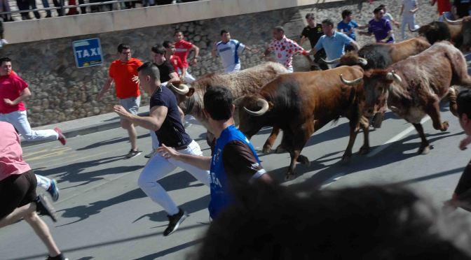 Imágenes de Fiestas de San Isidro en Alfaro