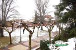 Nieve en Alfaro