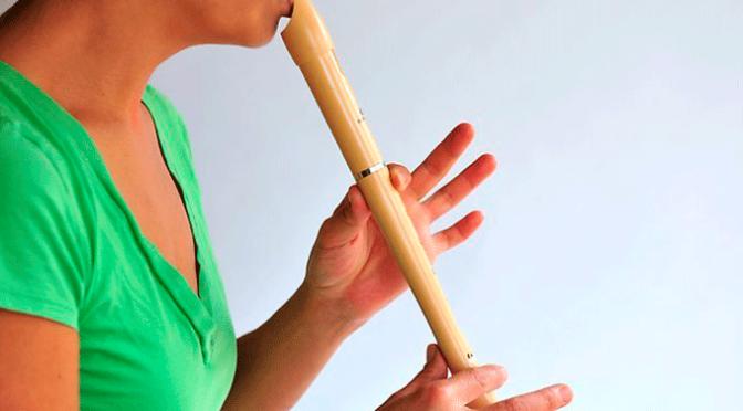 VII encuentro de flautistas de Navarra