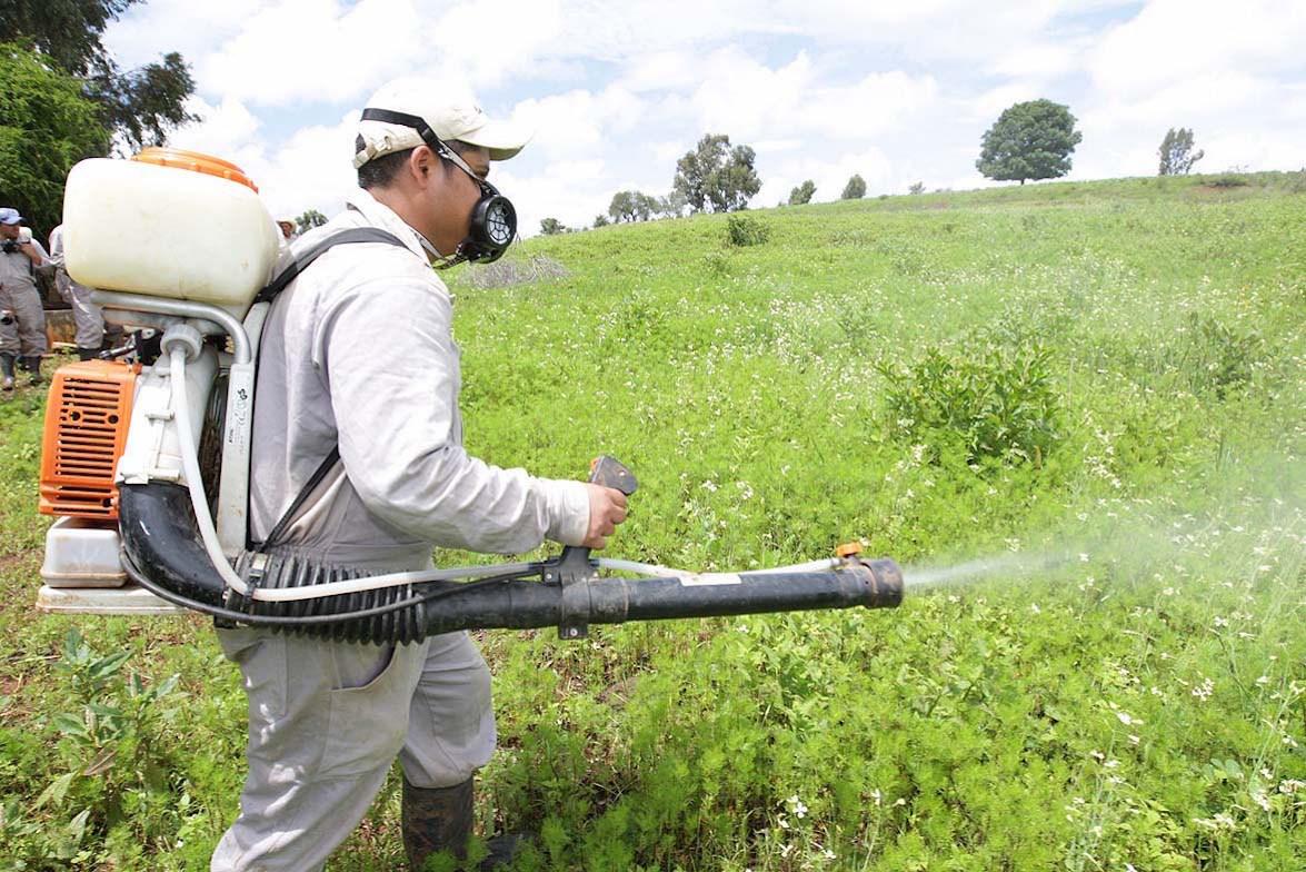 Resultado de imagen para aplicacion de productos de uso fitosanitario nivel basico