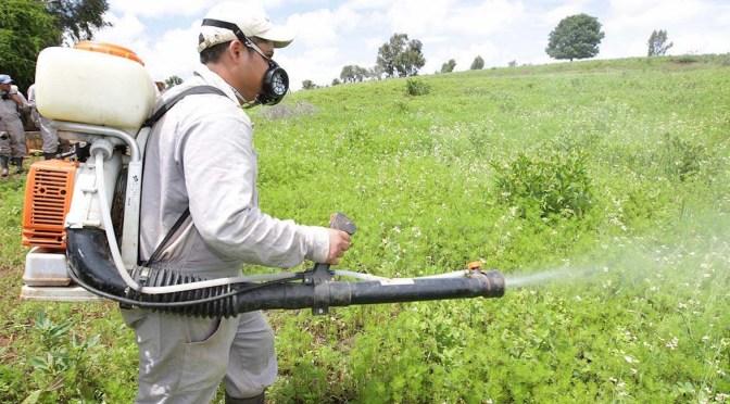 Carné de acreditación productos fitosanitarios