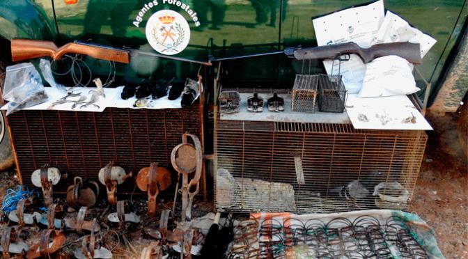 Agentes Forestales se incautan cepos ilegales, cadáveres y restos de fauna silvestre no cinegética en Alfaro