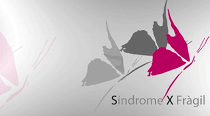 Curso de multideporte de la Asociación SíndromeXFrágil