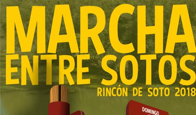 Marcha entre Sotos 2018 en Rincón de Soto