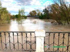 Puente Viejo del Ega