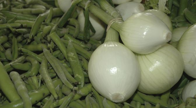 Programación oficial de las  XXIII Jornadas Gastronómicas de la Verdura