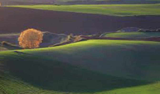 Concurso de fotografía para retratar La Rioja en primavera