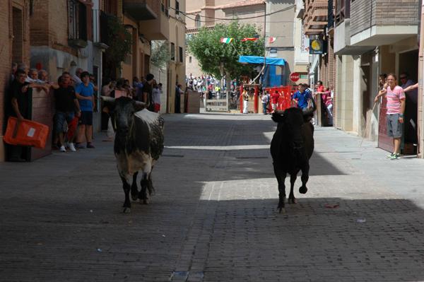 El día más taurino de las fiestas de Aldeanueva de Ebro