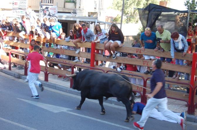 Galería: Tensión en el Encierro de toros
