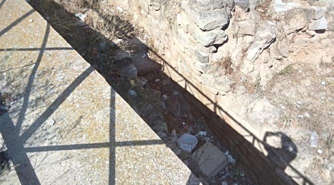 La asociación Amigos de la Historia de Calahorra denuncia el estado del yacimiento arqueológico de La Clínica