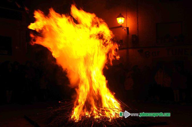El domingo hubo bendición de animales por San Antón en Calahorra