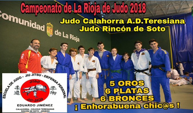 Muy buenos resultados en el campeonato de La Rioja 2018 de judo