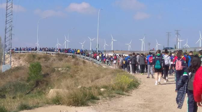 Marcha solidaria del Colegio Santa Teresa a beneficio de Fundeo