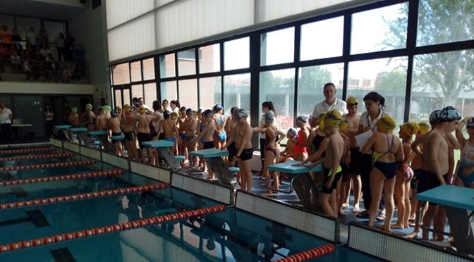 El CN Nassica en la 7ª Jornada de los juegos deportivos de natación de La Rioja