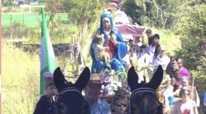 """Romería de la """"VIRGEN DE GRACIA"""" en San Adrián"""