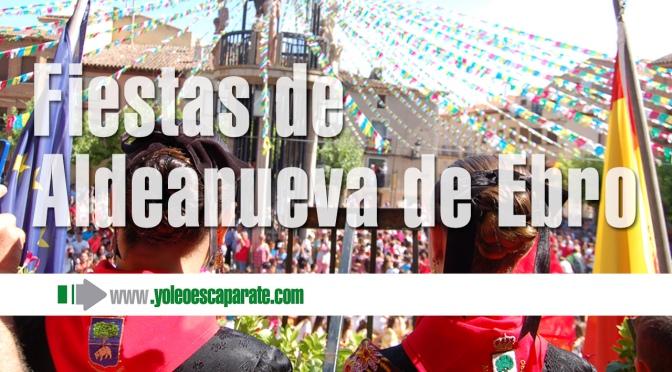 Galeria: Felices Fiestas Aldeanueva de Ebro