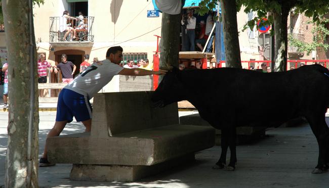 Día del Club Taurino en Aldeanueva de Ebro