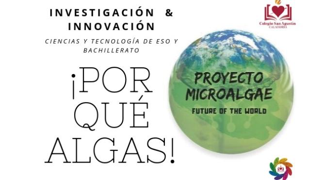 Proyecto Microalgae:  investigación sobre las múltiples utilidades de las algas en Agustinos