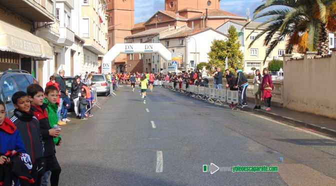 Más de 150 corredores se dieron cita ayer en San Adrián en el 13 Cross Vuelta al plantío
