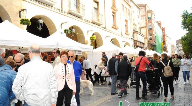 Galería: Feria de la Golmajería de Calahorra