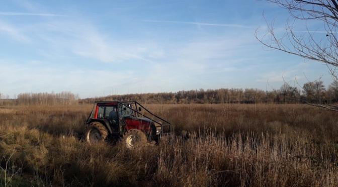 Inicio trabajos de restauración fluvial Ebro en Alfaro