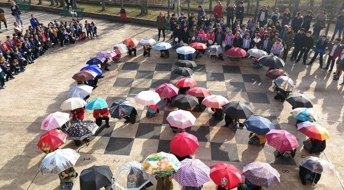 Galeria: Alumnos calagurritanos celebran el Día de la Paz