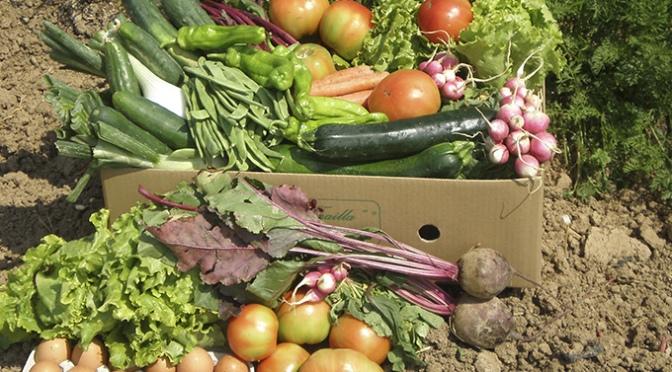 Suspensión de la actividad de venta directa de frutas, verduras y hortalizas durante el estado de alarma en Alfaro