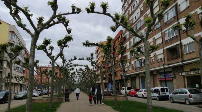 Galería: Niños y padres ya disfrutan por las calles de Calahorra
