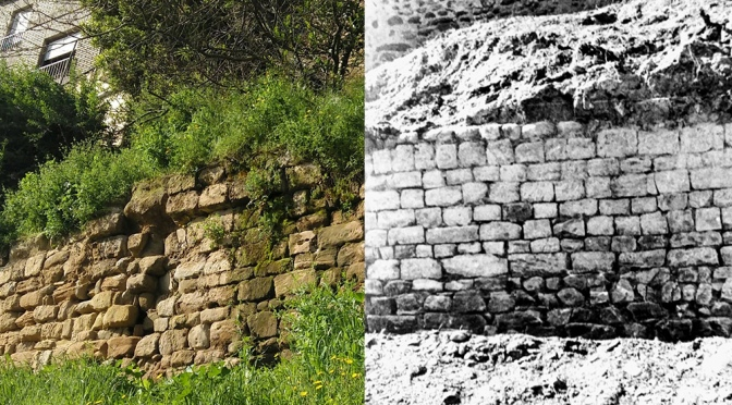 Denuncia del mal estado del tramo de muralla romana en las traseras de la calle San Blas de Calahorra