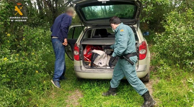 Denunciados en Aldeanueva de Ebro por saltarse el confinamiento para pescar siluros con artes prohibidas