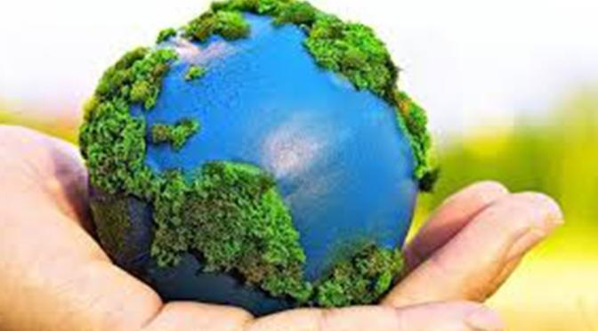 Dia internacional del medio ambiente por eso se fomenta los criterios de consumo responsable