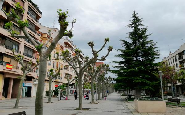 Adjudicada la elaboración del Plan de Movilidad Urbana Sostenible por el precio de 27.588 euros