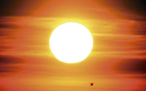 Aviso naranja por altas temperaturas: recomendaciones frente a la ola de calor