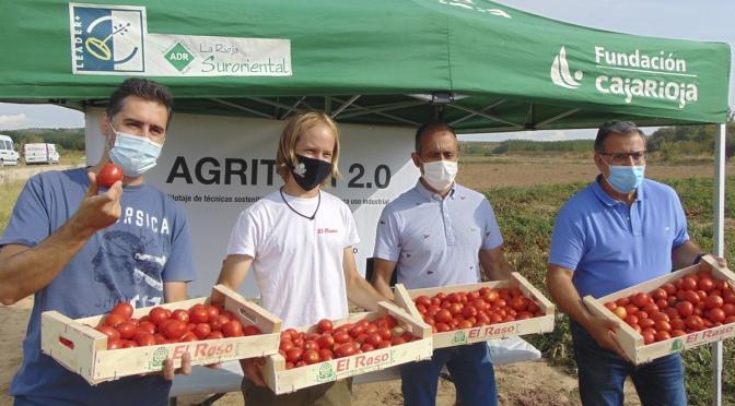 El proyecto AGRITOM2.0 presenta una producción excelente