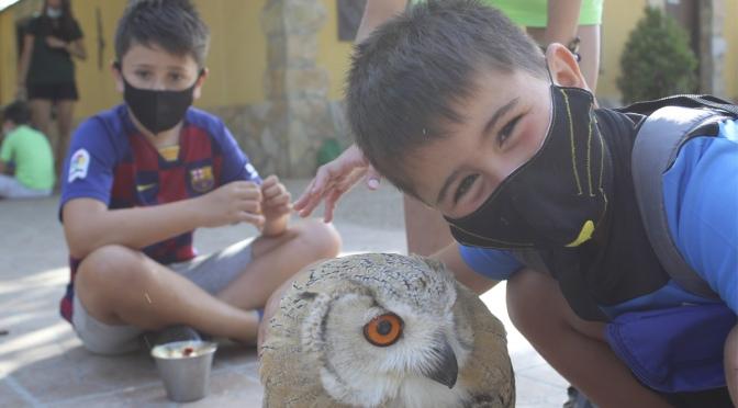 Buenos datos para Tierra Rapaz tras sus campamentos de verano