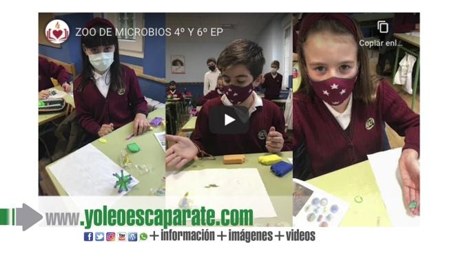 Alumnos de Agustinos se convierten en 'Cazadores de microorganismos'