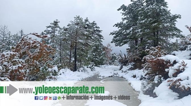 El temporal de nieve afectará principalmente a la Ribera y la Zona Media de Navarra