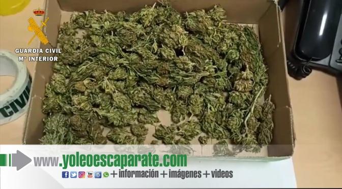 Detenido un vecino de Pradejón con 350 gramos de cogollos de marihuana