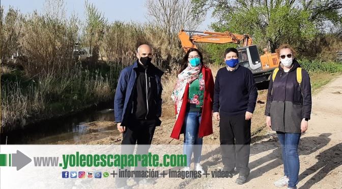 Comienzan en Calahorra los trabajos de eliminación de caña común