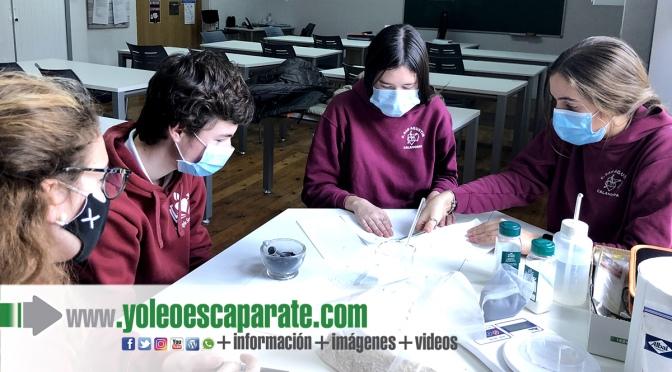 El colegio San Agustín de Calahorra pasa a la semifinal del Certamen Tecnológico Efigy