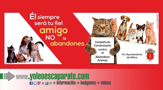 Servicio de recogida de perros de la vía pública en Alfaro