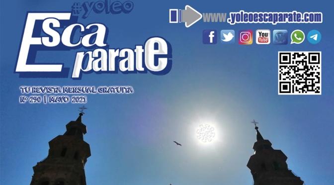 PRUDENCIA, en Escaparate Alfaro Mayo