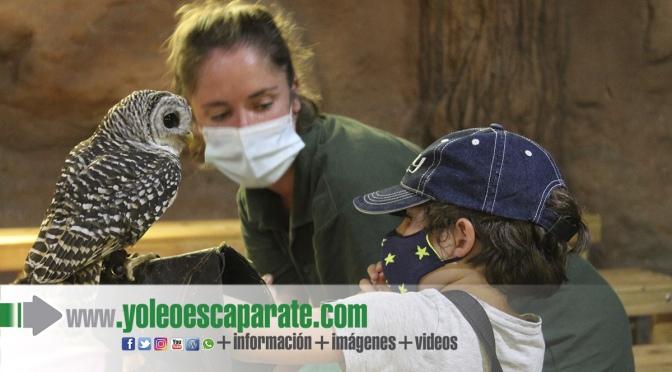 Campamento Tierra Rapaz 2021,  no hay otro igual