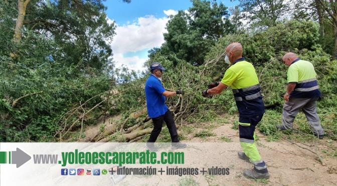 Despejada la red de caminos de Calahorra tras las tormentas de los últimos días